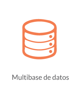 Multibase de datos